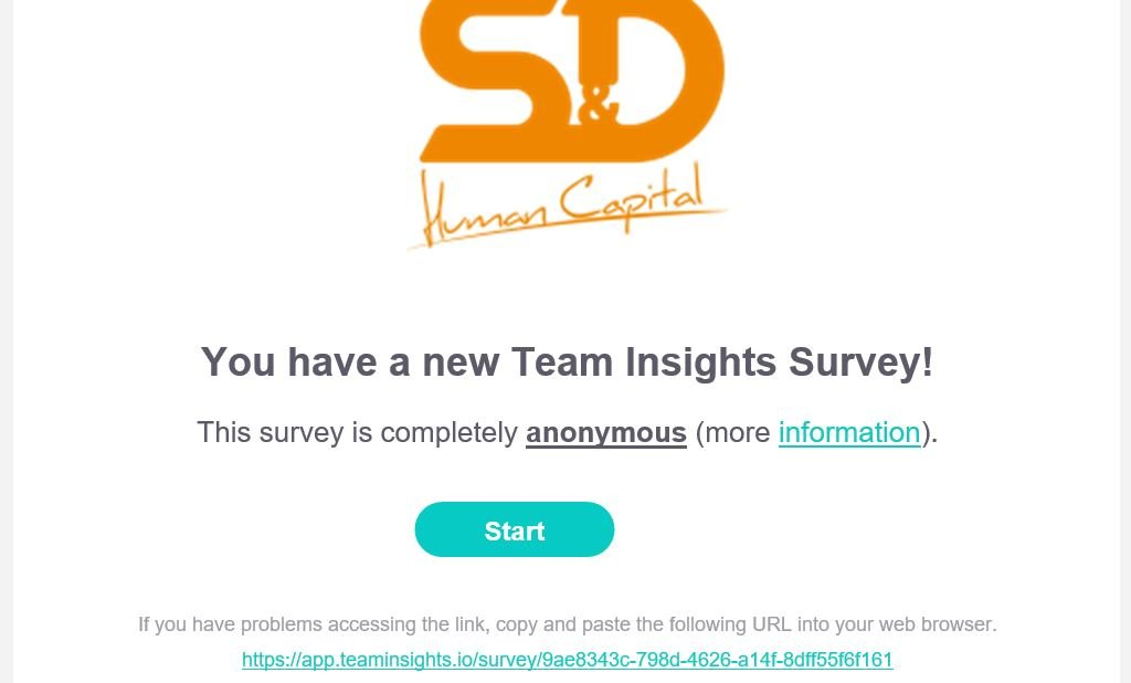 New email Team Insights image