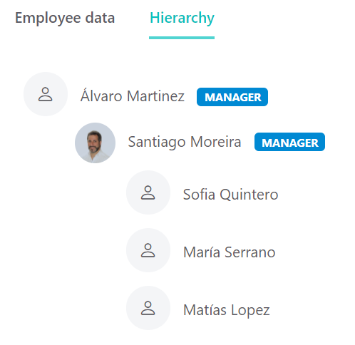 Team Insights Managers